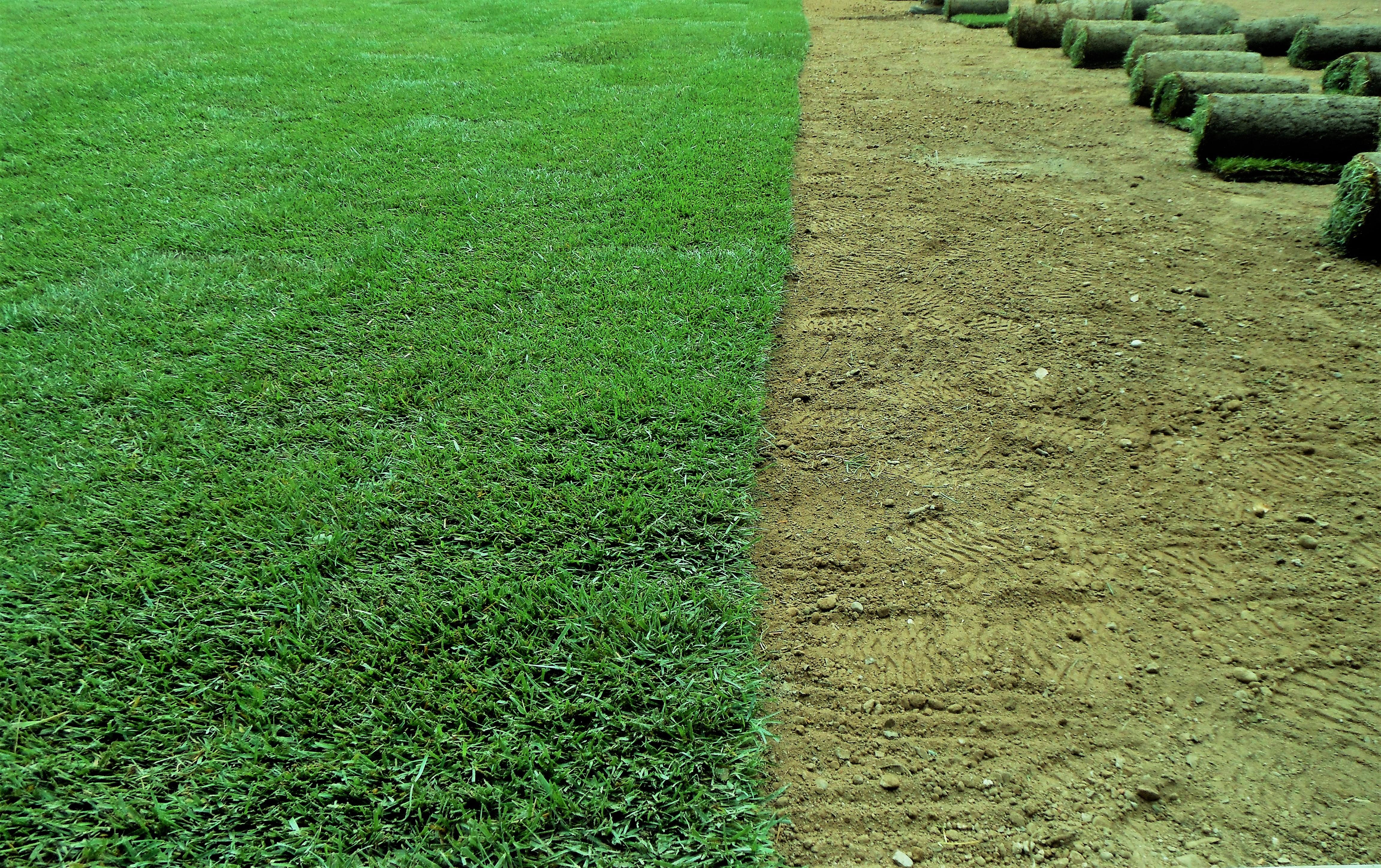 Giardiniere Gallarate Manutenzione del verde