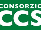 Consorzio Cooperative Sociali Il Consorzio CCS associa cooperative sociali che si occupano di servizi alla persona e di inserire al lavoro persone escluse
