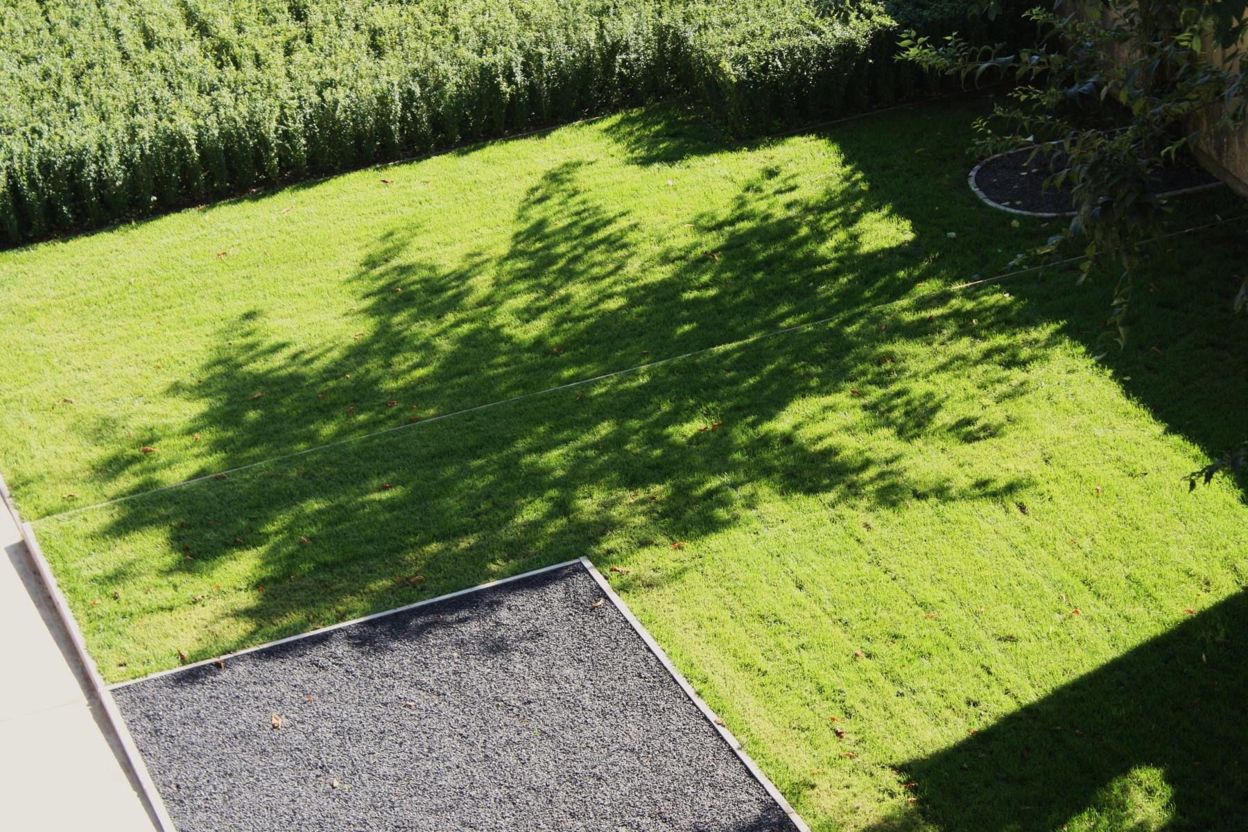 Manutenzione del verde gallarate parco ticino
