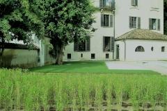 Intervento sede Parco Ticino